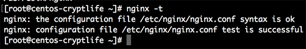 Nginx Test for Configuration File